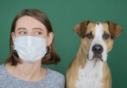 """Zvířata onemocnění """"COVID-19"""" novým koronavirem nešíří! Virus se přenáší pouze z člověka na člověka!"""